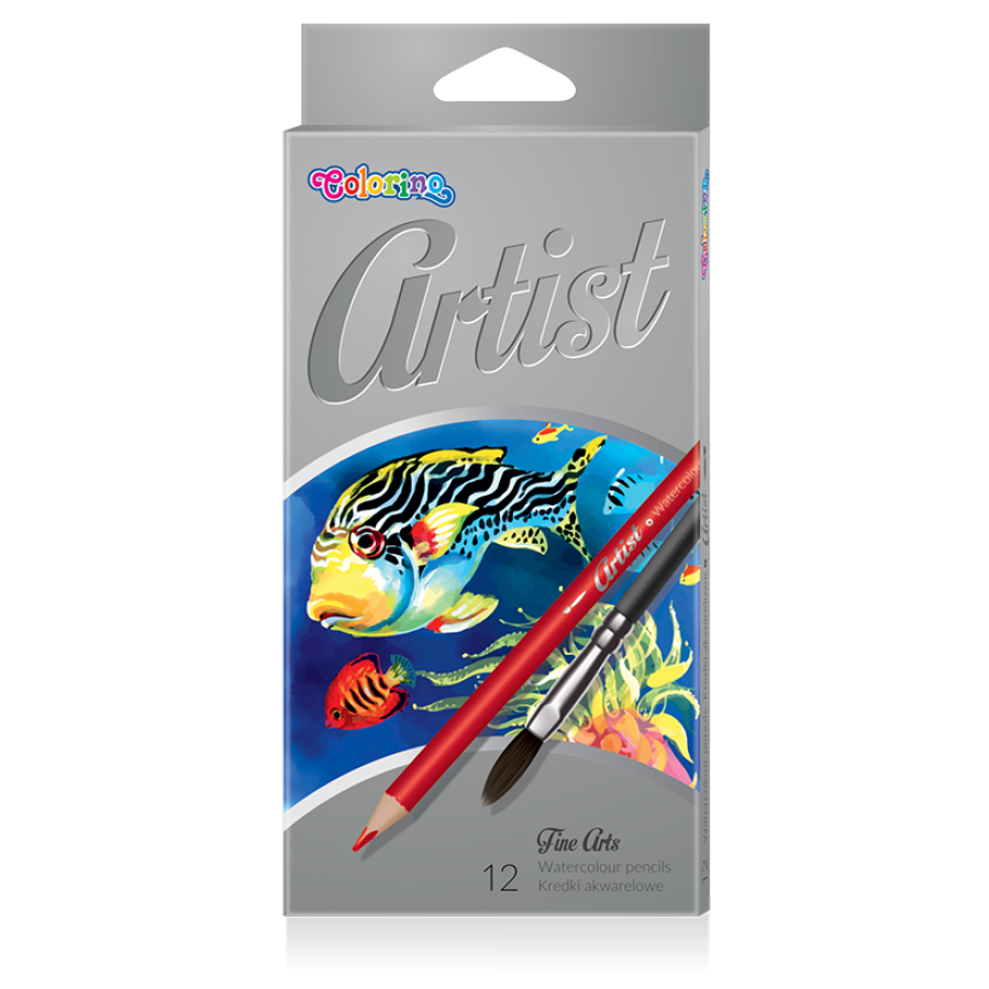 Artist Watercolour pencils 12 colours